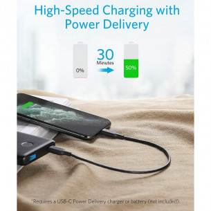 Anker PowerLine III Type-C to Lightning Cable 1FT/0.3M - Black